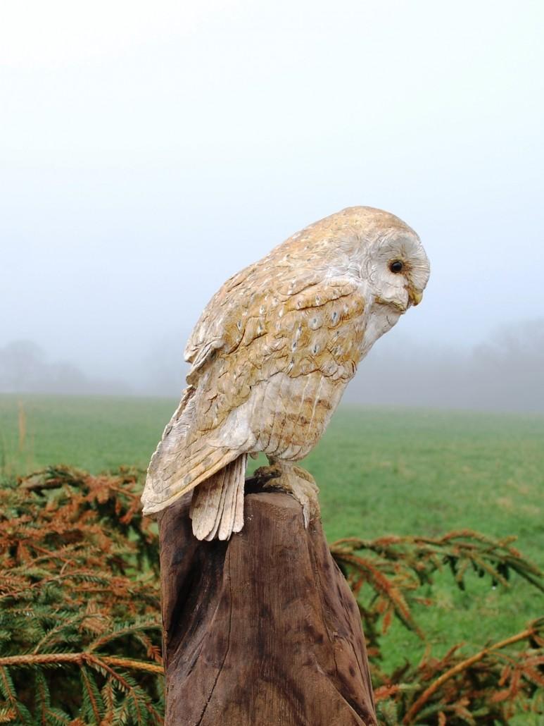 Martyn Bednarczuk Fine Art Bird Carvings